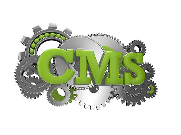 Why Use A Custom CMS?