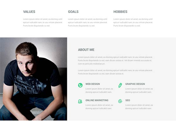focal resume psd theme 2 - Website Resume