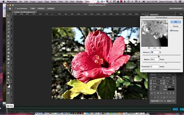 Sharpen an Image In Lab Mode With Photoshop