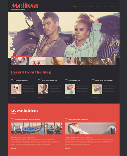 Free and Premium WordPress Themes - Photography