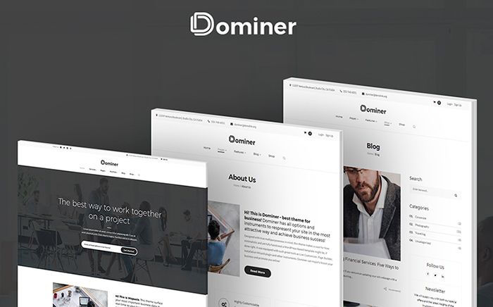 Dominer Business & Services WordPress Theme